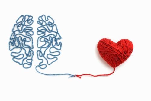 脳と心の画像